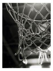A kosárlabda palánk története